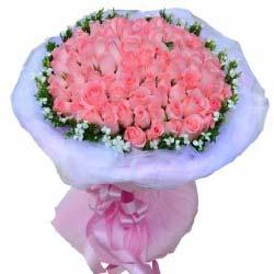 33支玫瑰/爱的足迹