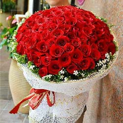 99枝红玫瑰/我喜欢你