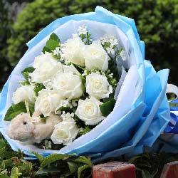 11枝白玫瑰/每刻思念你