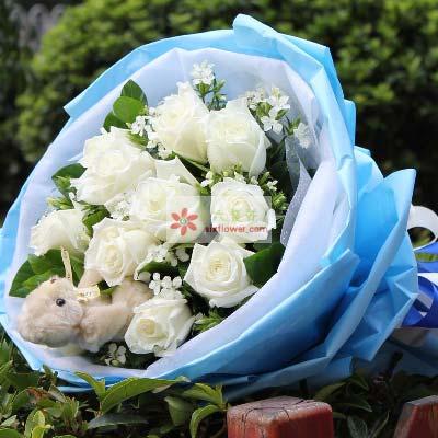 11支白玫瑰/每刻思念你