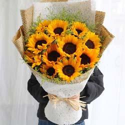 10朵向日葵…