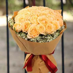 22朵香槟玫瑰,让我的爱永驻你的每一天