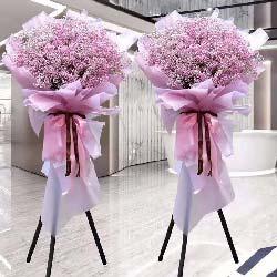 2扎粉色满天星开业花篮,生意兴隆万事好