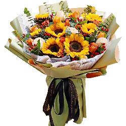 8朵向日葵,有你感觉幸福