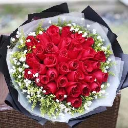 33朵红玫瑰/永远幸福洒脱