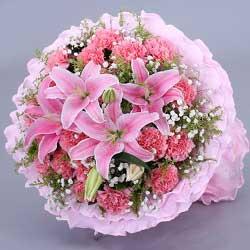 22朵粉色康乃馨,快乐无边