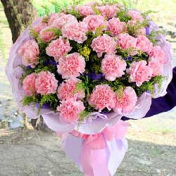 30朵粉色康乃馨,永远年轻
