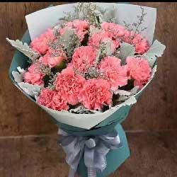 12朵粉色康乃馨,永远年轻