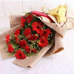 16朵红色扶郎花,幸福生活