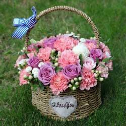 8朵紫玫瑰,16朵粉色康乃馨,精美手提花篮