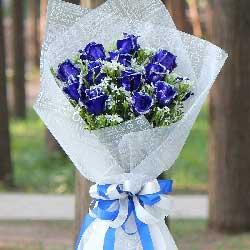 12朵蓝玫瑰,我一直爱着你