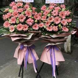 26朵粉色扶郎花,微笑开业