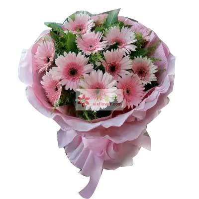 11朵粉色扶郎花,友谊长青