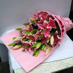 9支多头粉色百合,芬芳而美丽