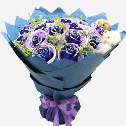 16朵蓝玫瑰,抱你吻你