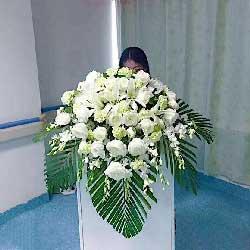 20朵白玫瑰,会议讲台主席台花