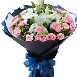 22朵粉色康乃馨,您辛苦了