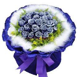 27朵蓝玫瑰,真情言语