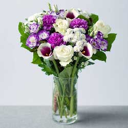 3朵马蹄莲,11朵紫色桔梗,安心做一个凡人