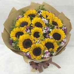 11朵向日葵,福富双收乐逍遥