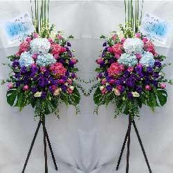 6朵绣球花,三脚架花,繁荣昌隆
