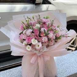 30朵粉色桔梗,潇洒度时光