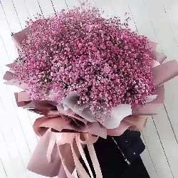 粉色满天星2扎,你就是我一见钟情的那个人