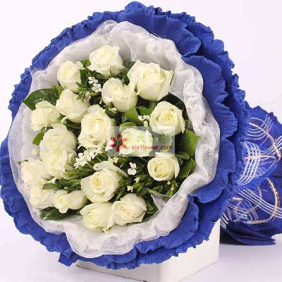 18朵白玫瑰,亲爱的我爱你