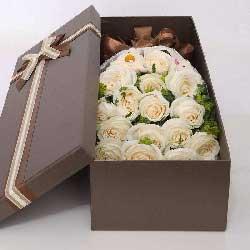 16朵白玫瑰,我们紧紧相依