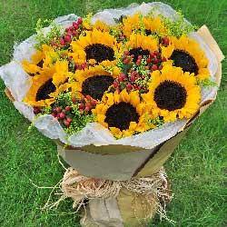 10朵向日葵,感激您