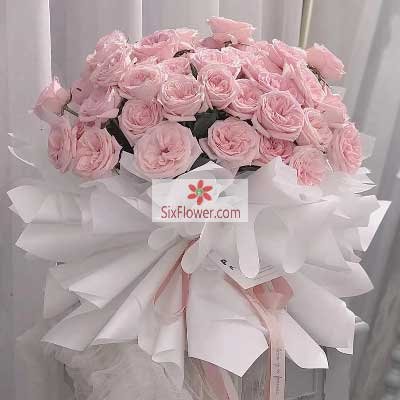 33朵戴安娜粉玫瑰,相伴一生