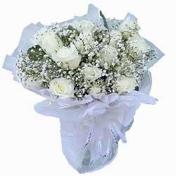 18朵白玫瑰,你是我今生追逐的唯一