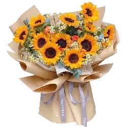 11朵向日葵,你是我的整个世界