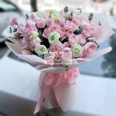 19朵粉色佳人玫瑰,心儿被你偷