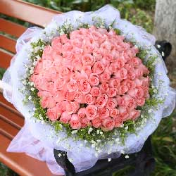 99朵戴安娜玫瑰,浪漫幸福永远