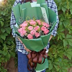 20朵粉色康乃馨,健康幸运