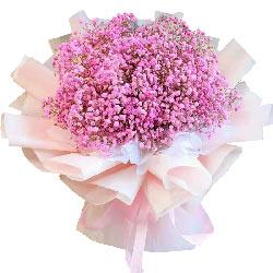 粉色满天星一大扎花束,热血沸腾的心