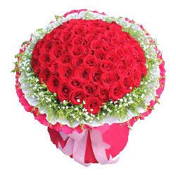 100朵红玫瑰,喜欢与你的感觉
