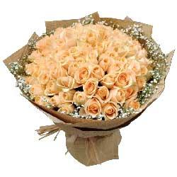 100朵香槟玫瑰,你就是我爱的风景线