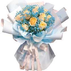 11朵香槟玫瑰满天星搭配,爱不虽时间改变