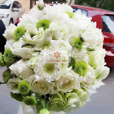 手捧花,爱所爱的人