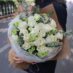 19朵白玫瑰,你就是我寻觅的人