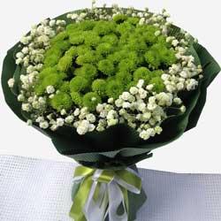 一大扎小雏菊,愿拥着你一生一世