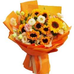 10朵向日葵,你是我永远的太阳