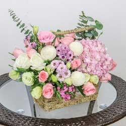 11朵戴安娜粉玫瑰,手提花篮,爱伟大