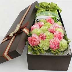 19朵康乃馨,礼盒装,您辛苦了