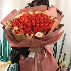 60颗草莓,辉煌的明天
