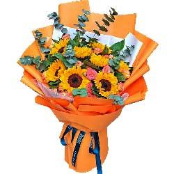 8朵向日葵,天天开心前途无量