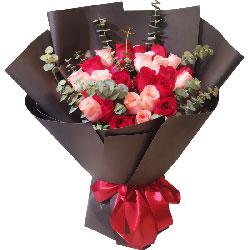 33朵玫瑰,浪漫快乐每一天