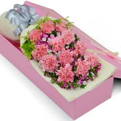 12朵粉色康乃馨,礼盒装,感恩你一生